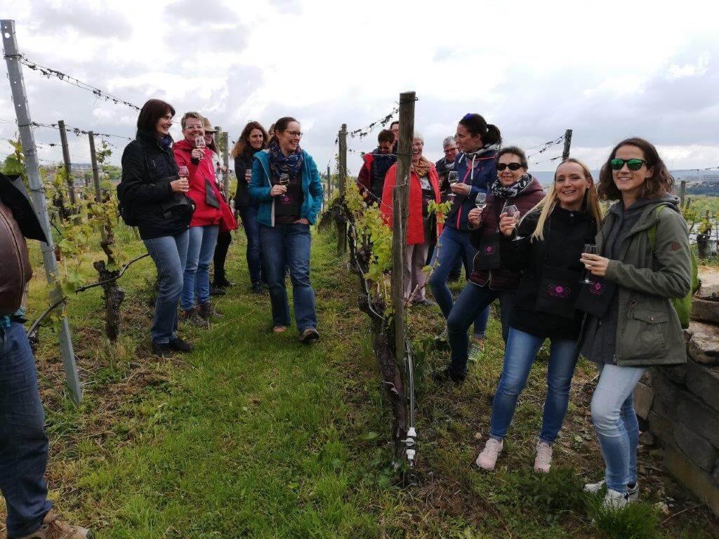 Weinwanderung Steillagen